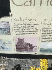 carrick history